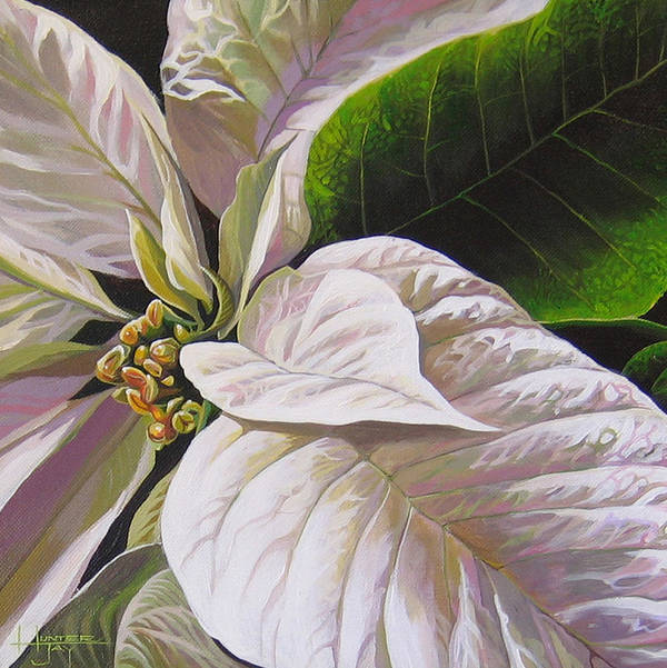 White Poinsettia Art Print featuring the painting Christmas Eve by Hunter Jay