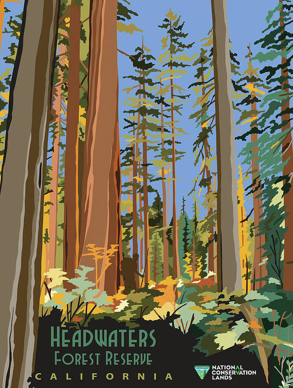 Vintage poster - Headwaters Forest Reserve by Vintage Images