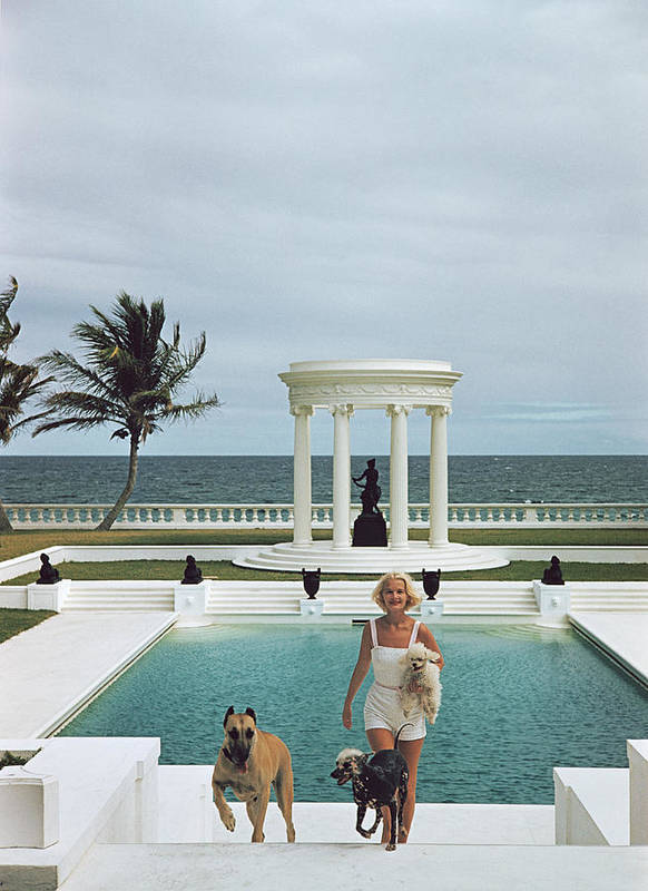 Pets Art Print featuring the photograph Czs Dogs by Slim Aarons
