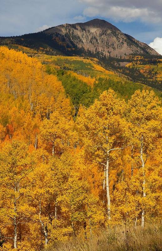 San Print featuring the photograph San Juan Mountains In Autumn by Jetson Nguyen