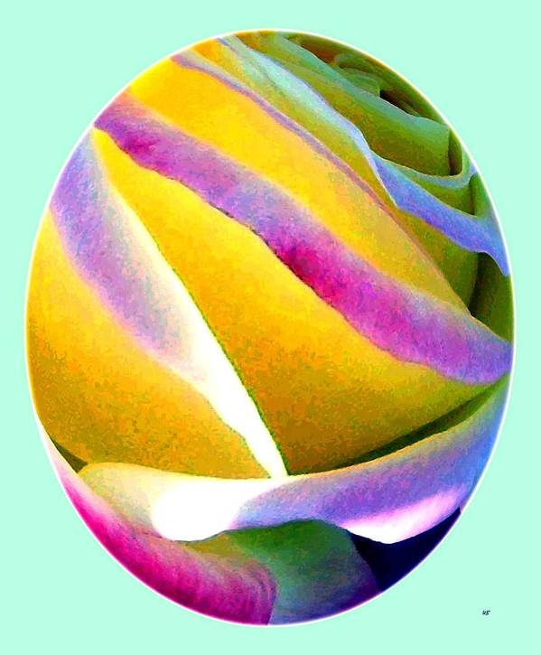 Abstract Rose Oval Print featuring the digital art Abstract Rose Oval by Will Borden