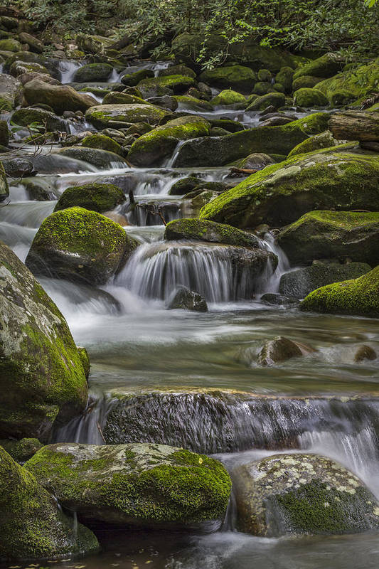 Vertical Print featuring the photograph Back Country Stream by Jon Glaser