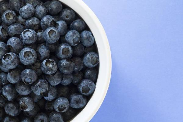Antioxidants Print featuring the photograph Bowl Of Blueberries by Steven Raniszewski
