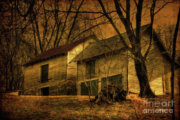 Barn Print featuring the photograph Evening Twilight Fades Away by Lois Bryan