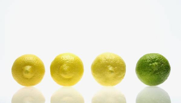 Comparability Print featuring the photograph Lemons And Lime by Kelly Redinger