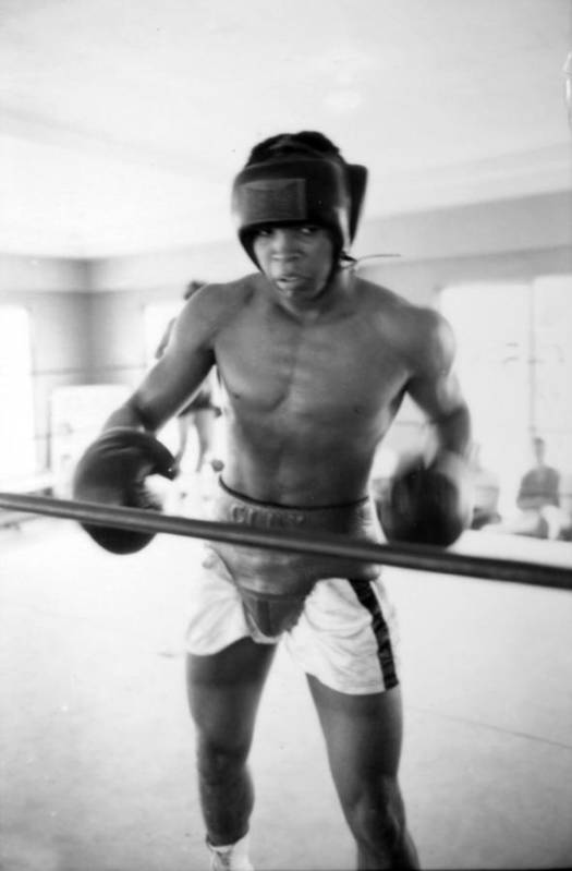 Marvin Newman Print featuring the photograph Muhammad Ali Training Inside Ring by Retro Images Archive
