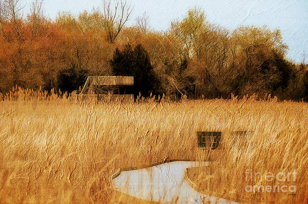 Marsh Print featuring the photograph The Overlook by Lois Bryan