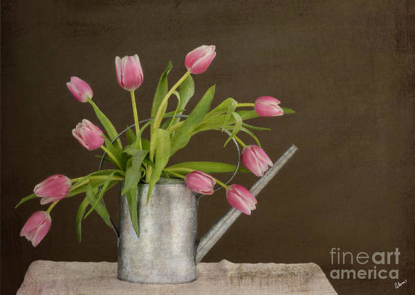 Tulips Print featuring the photograph Tulip Bouquet by Alana Ranney