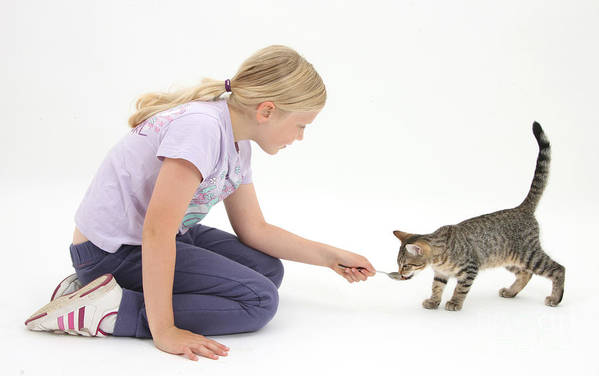 Nature Print featuring the photograph Girl Feeding Kitten From A Spoon by Mark Taylor