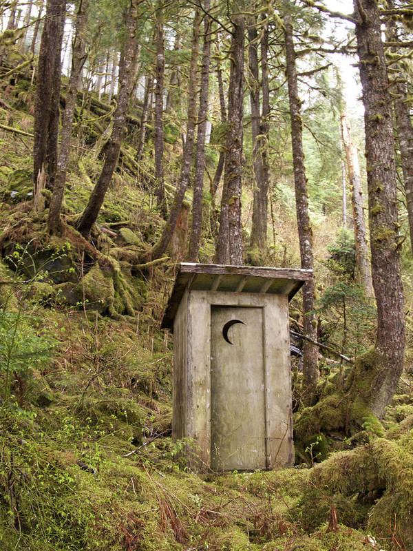 Outdoors Print featuring the photograph An Outhouse In A Moss Covered Forest by Michael Melford