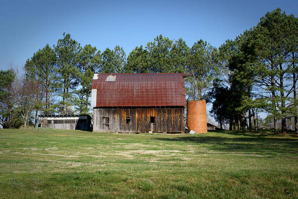 Barn Print featuring the photograph Barn With Tree In Silo by Douglas Barnett