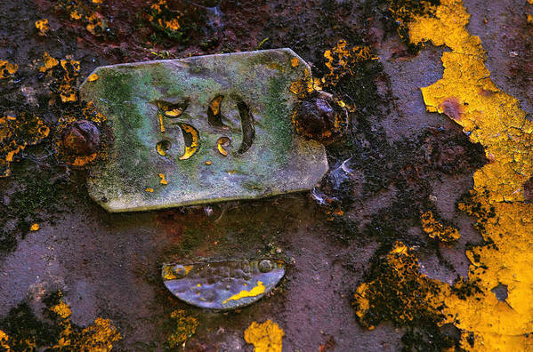 Background Print featuring the photograph Plate 59 by Carlos Caetano