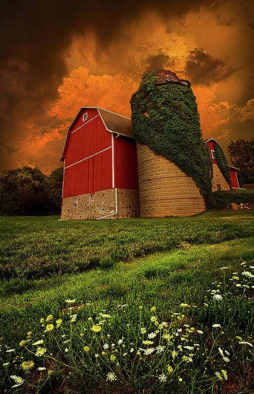 Horizons Print featuring the photograph Sentient by Phil Koch