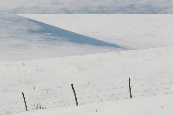 Barbed Wire Print featuring the digital art Winter Day On The Prairies by Mark Duffy