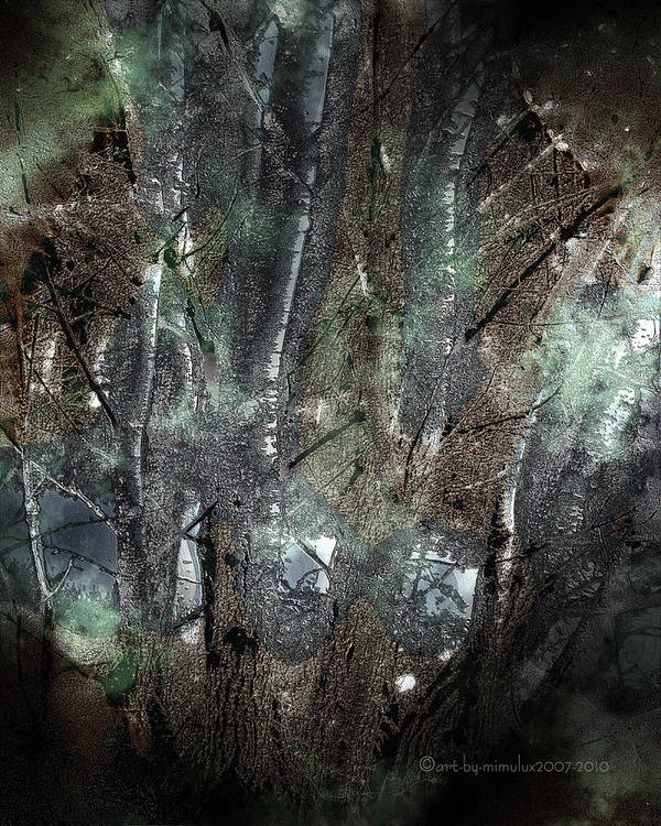 Zauberwald Print featuring the photograph Zauberwald Vollmondnacht Magic Forest Night Of The Full Moon by Mimulux patricia no