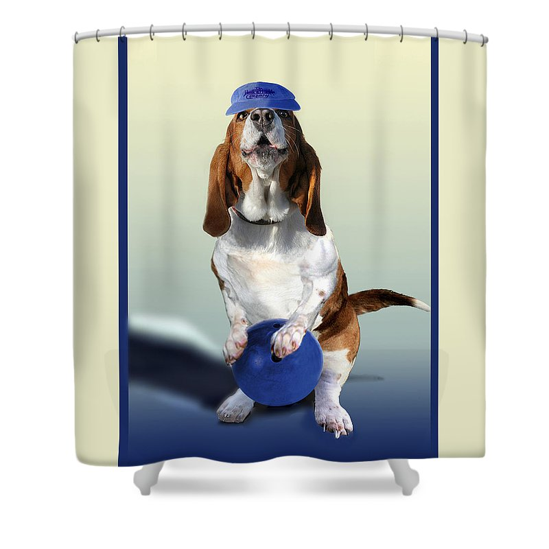 Animal Shower Curtain featuring the painting Bowling Hound by Regina Femrite