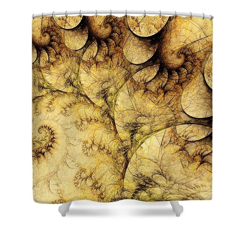 Plant Shower Curtain featuring the digital art Idea Of A Tree by Anastasiya Malakhova