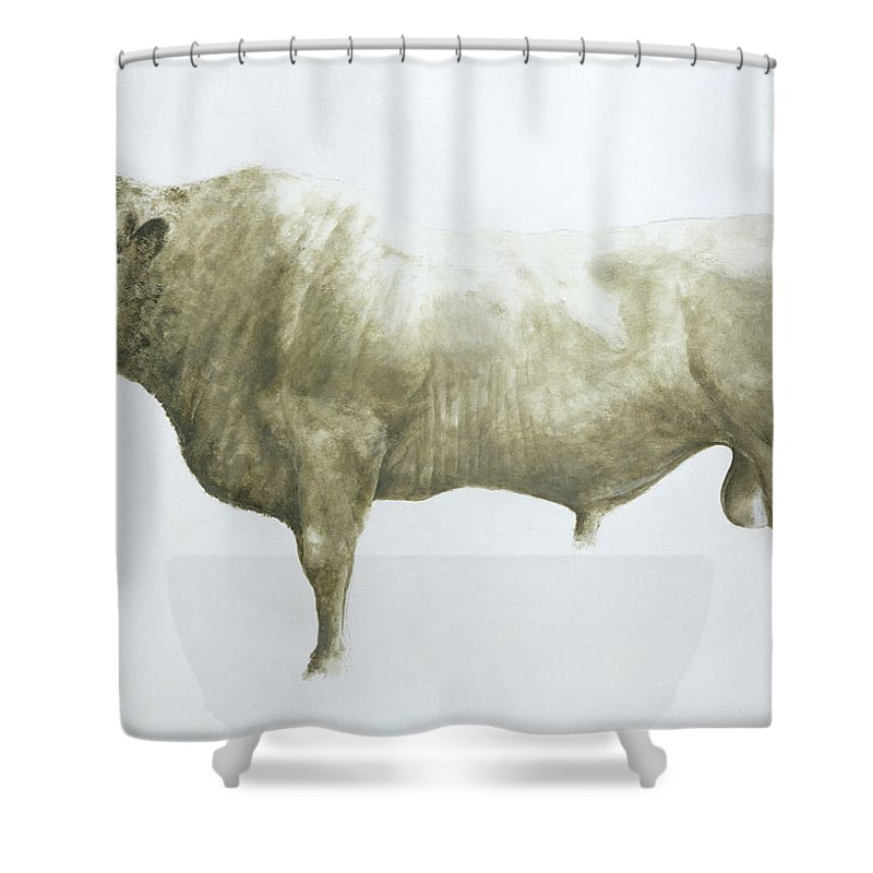 Animal; Nose Ring Shower Curtain featuring the painting Islay Bull by Lincoln Seligman