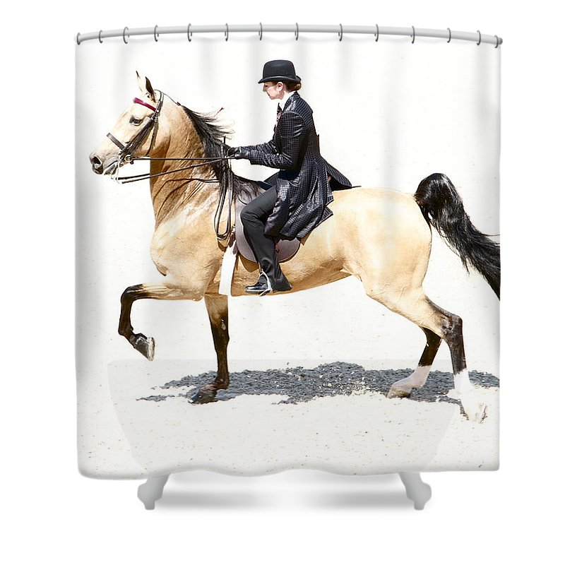 Horse Shower Curtain featuring the photograph Lovely Gaited Buckskin by Alice Gipson