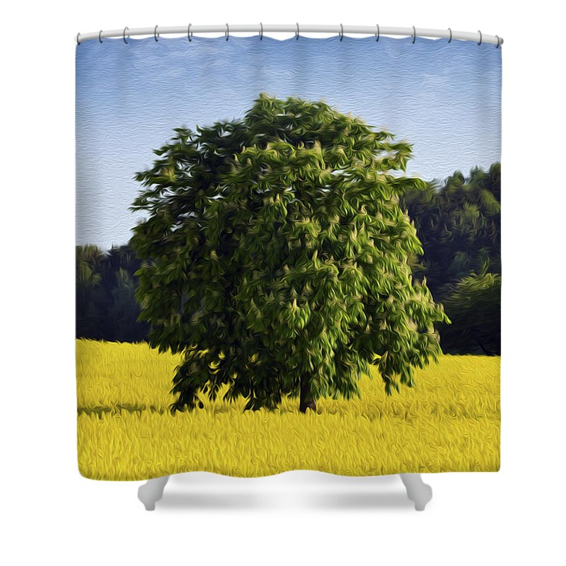 Rape Shower Curtain featuring the photograph Rapeseed Field by Aged Pixel