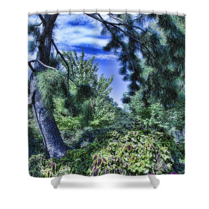 Tree Shower Curtain featuring the photograph The Garden by Douglas Barnard