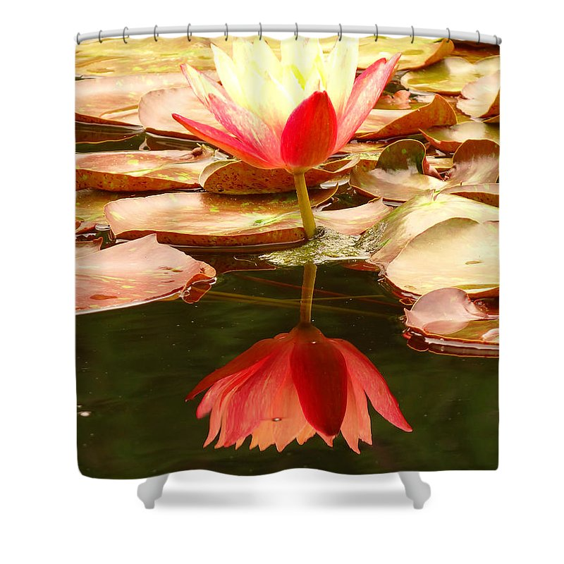 Pink Shower Curtain featuring the photograph 0116 by Onyx Armstrong