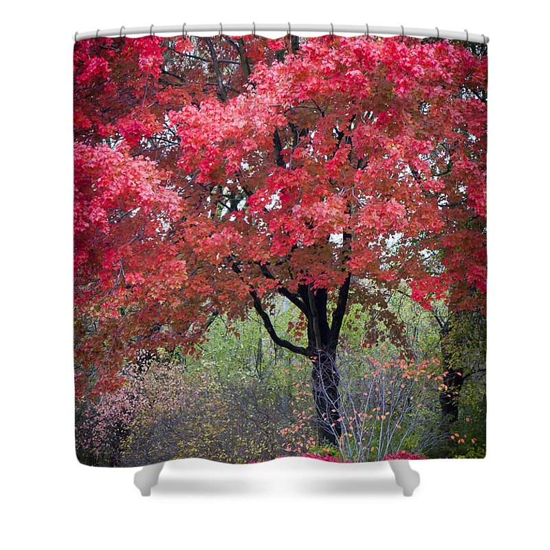 Scenic Shower Curtain featuring the photograph 0277 Blazing Red by Steve Sturgill