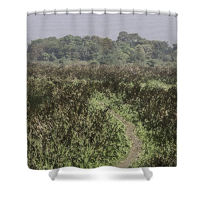 Bird Sanctuary Shower Curtain featuring the digital art A Small Path Through Very Tall Grass Inside The Okhla Bird Sanctuary by Ashish Agarwal