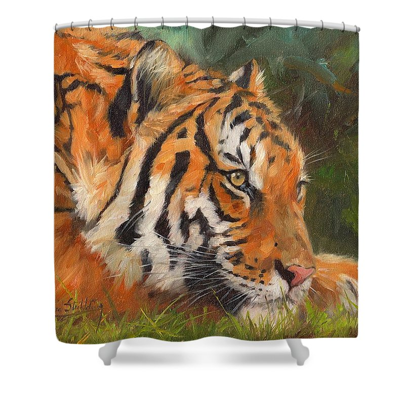 Tiger Shower Curtain featuring the painting Amur Tiger by David Stribbling