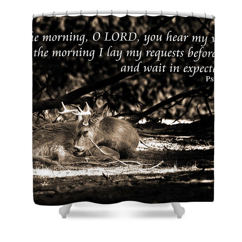 Inspirational Shower Curtain featuring the photograph At Rest by Bill Pevlor