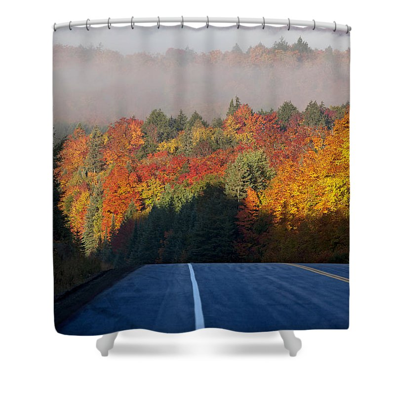Yellow Shower Curtain featuring the photograph Autumn Colors And Road by Mark Duffy