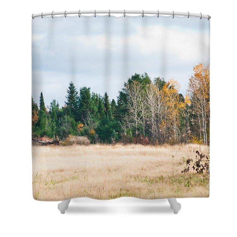 Landscapes Shower Curtain featuring the photograph Autumn Field by Cheryl Baxter