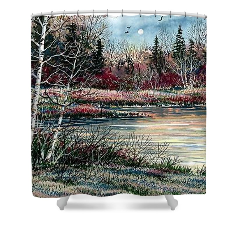 Lake Shower Curtain featuring the painting Birch Lake by Steven Schultz