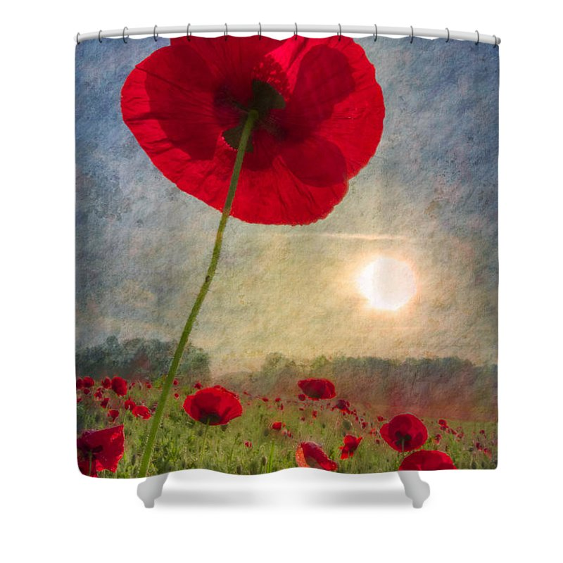 American Shower Curtain featuring the photograph Celebrate The Day by Debra and Dave Vanderlaan