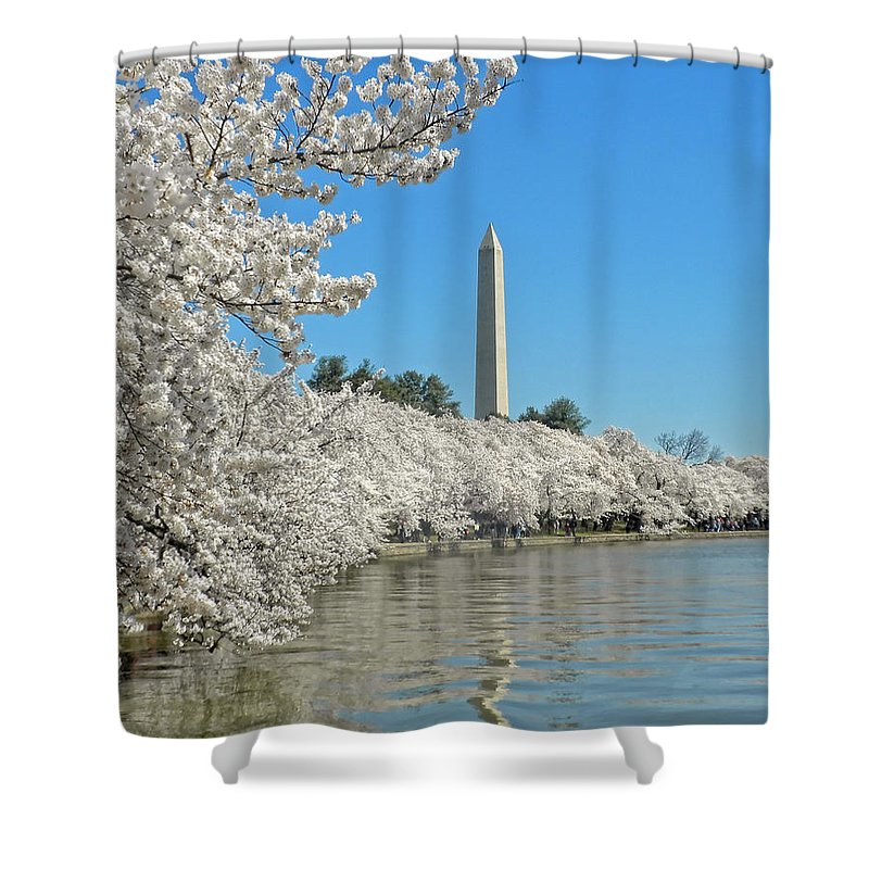 Cherry Blossoms Shower Curtain featuring the photograph Cherry Blossoms by Dave Mills