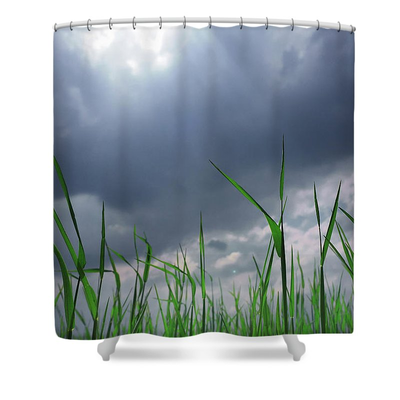 Thunderstorm Shower Curtain featuring the photograph Corn Plant With Thunderstorm Clouds by Silvia Otte