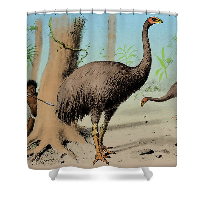 Aves Shower Curtain Featuring The Photograph Dinornis, Giant Moa, Cenozoic  Bird By Science Source