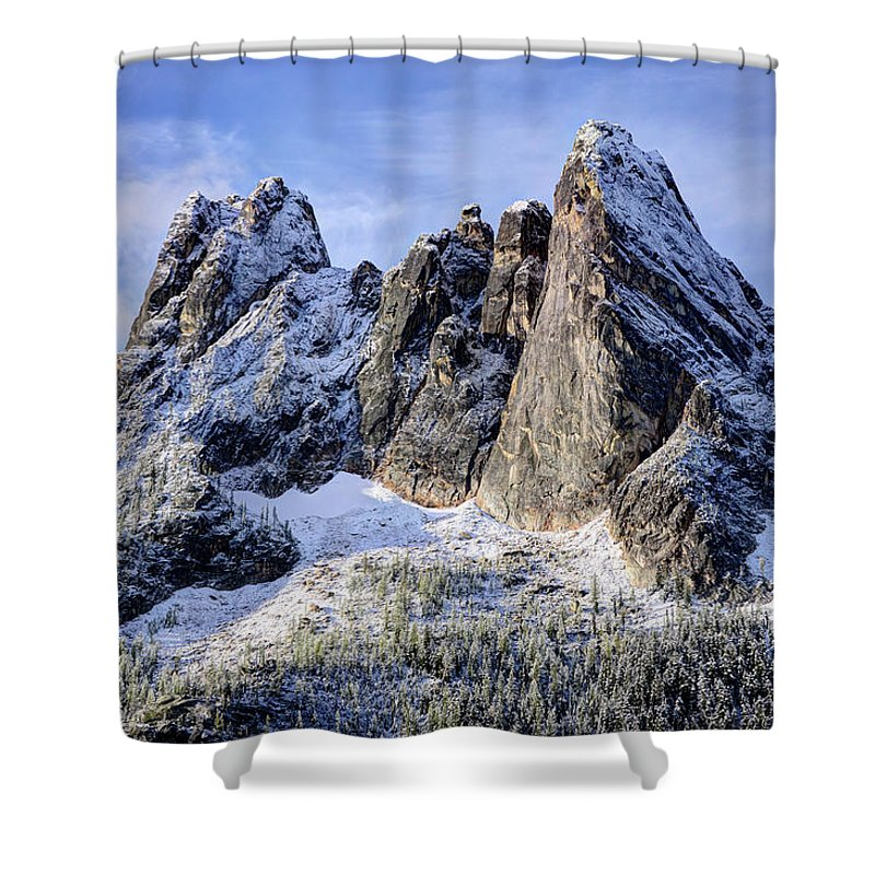 Tranquility Shower Curtain featuring the photograph Early Winter Spires by Virtualphotographers