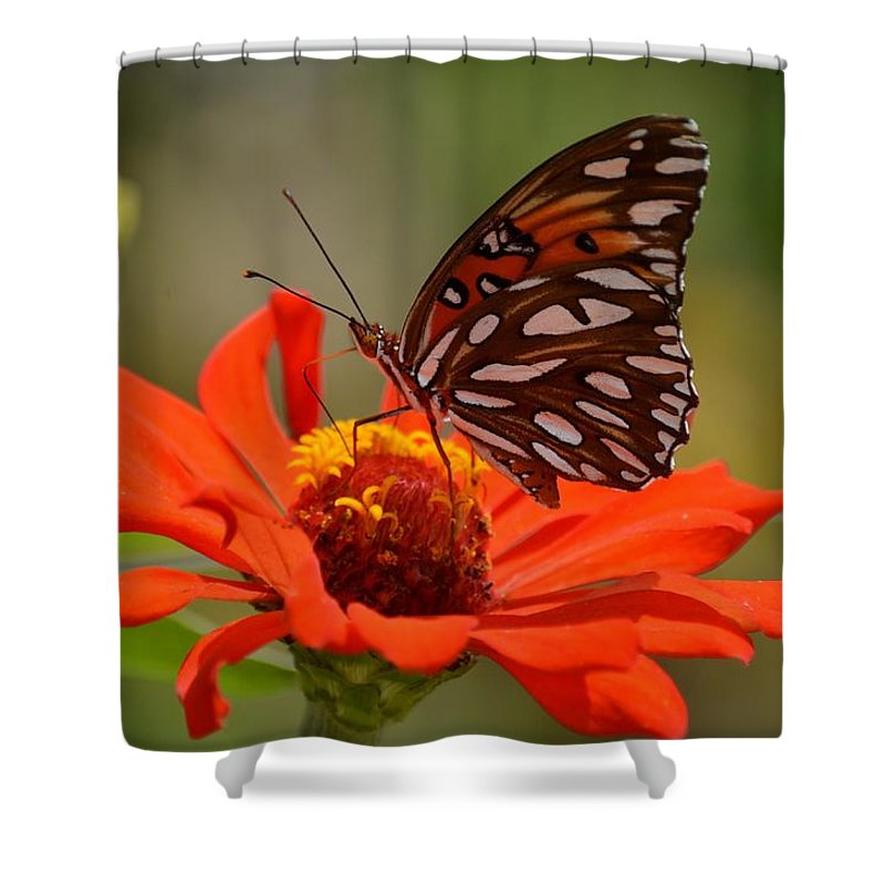Encapturing Beauty Shower Curtain featuring the photograph Encapturing Beauty by Maria Urso
