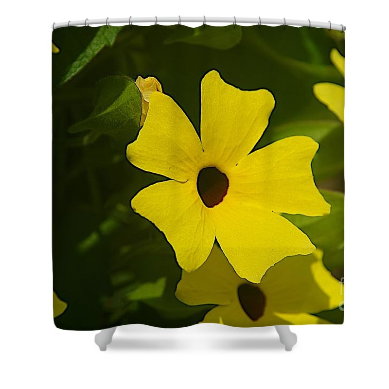 Spring Shower Curtain featuring the photograph Eyes by Joseph Yarbrough