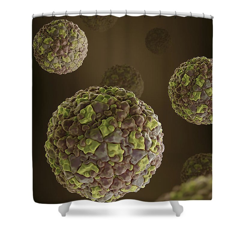 Picornavirus Shower Curtain featuring the photograph Foot-and-mouth Disease Virus by Science Picture Co