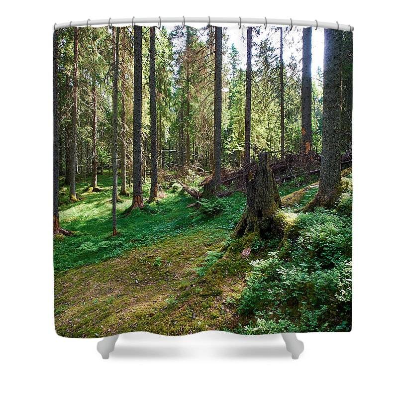 Finland Shower Curtain featuring the photograph Forest by Jouko Lehto