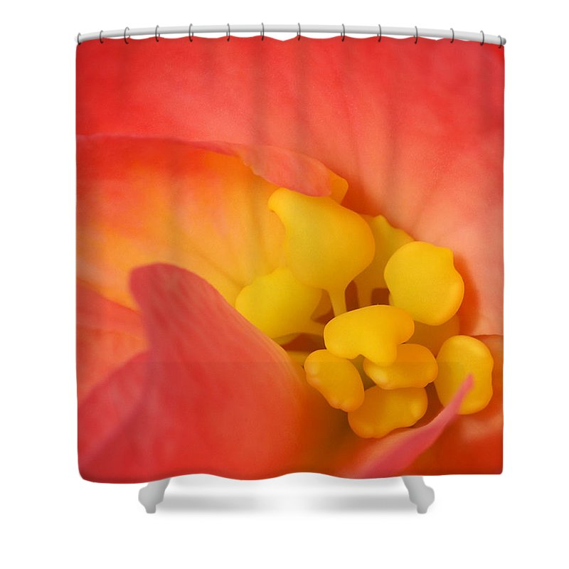 Begonia Close Up Shower Curtain featuring the photograph From The Heart by Bill Morgenstern