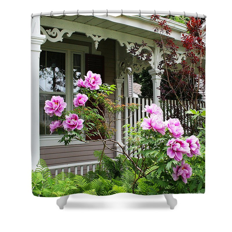 Flower Shower Curtain featuring the photograph Gingerbread And Tree Peonies by Barbara McMahon