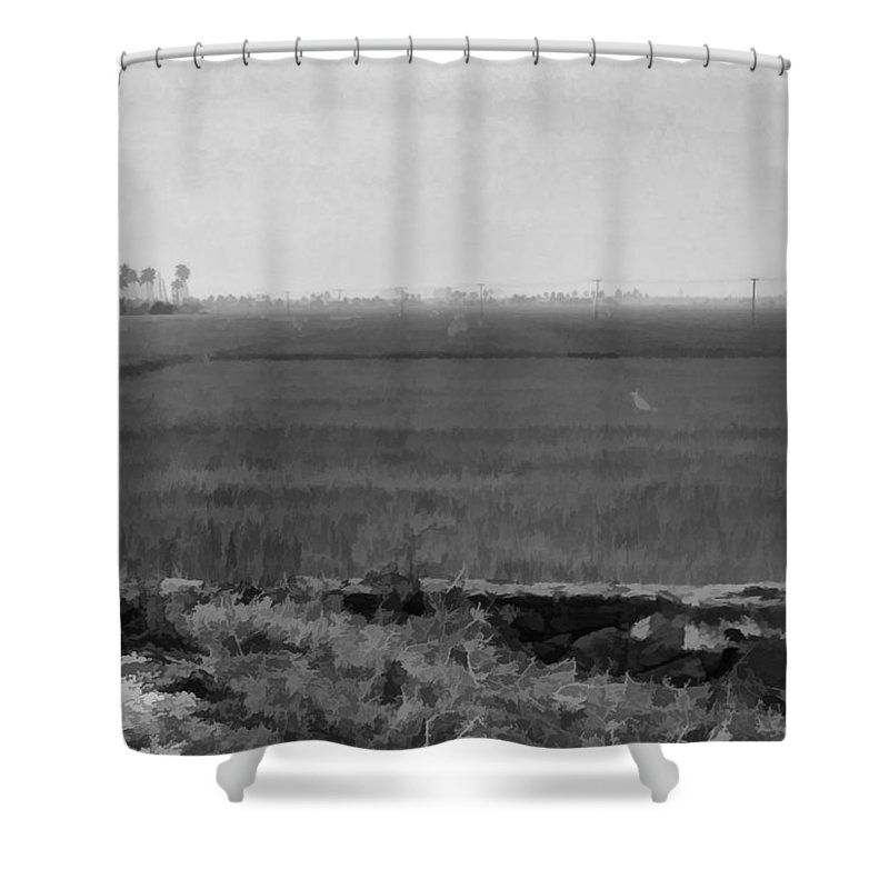 Blue Shower Curtain featuring the digital art Green Fields With Birds by Ashish Agarwal