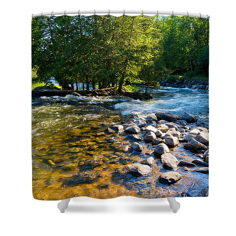 Gull Shower Curtain featuring the photograph Gull River by Les Palenik