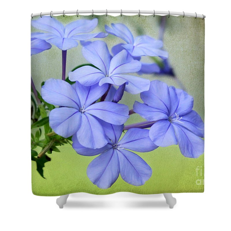 Fall Shower Curtain featuring the photograph I Love Blue Flowers by Sabrina L Ryan