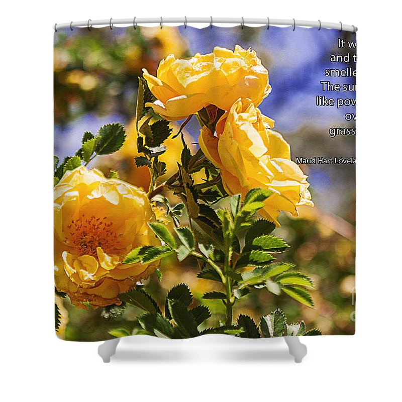 Crazy Woman Art Shower Curtain featuring the photograph It Was June by Janice Pariza