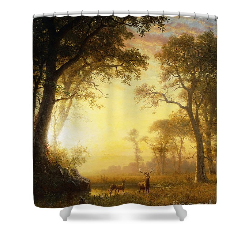 19th Century Shower Curtain featuring the painting Light In The Forest by Albert Bierstadt