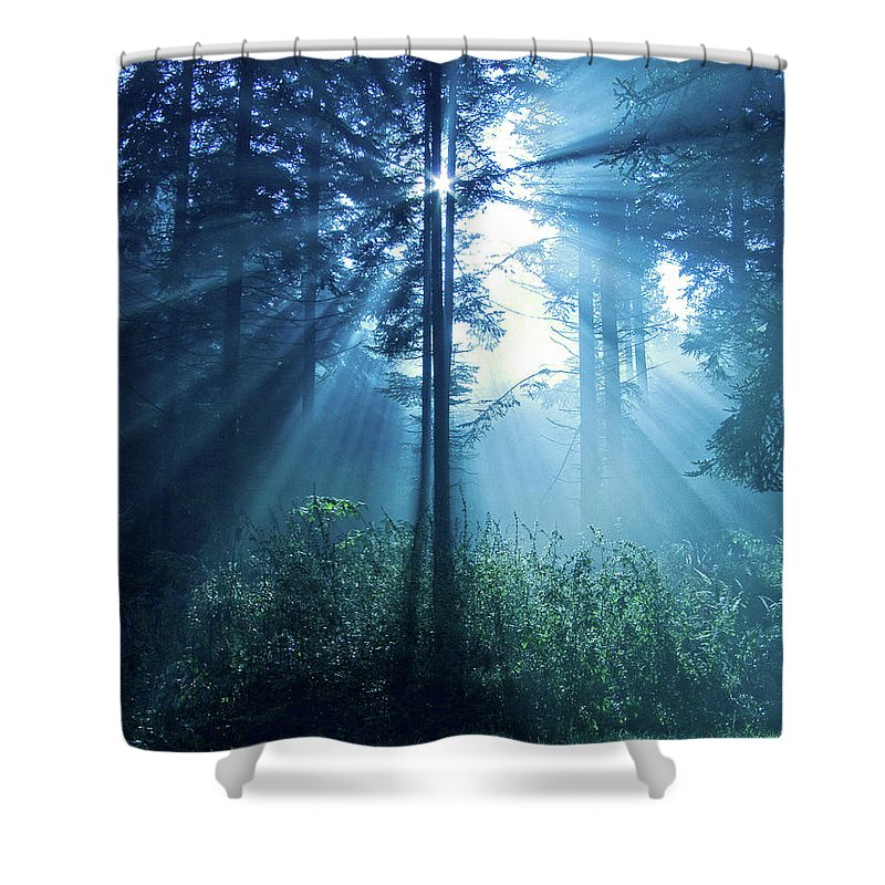 Nature Shower Curtain featuring the photograph Magical Light by Daniel Csoka